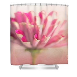 Shower Curtain featuring the photograph Pink Zinnia by Elena Nosyreva