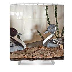 Pintail Ducks Shower Curtain
