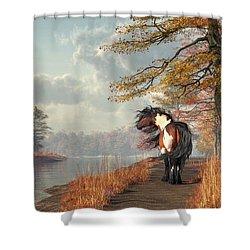 Shower Curtain featuring the digital art Pinto Horse On A Riverside Trail by Daniel Eskridge