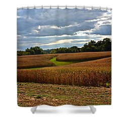 Pinwheel Cornfield Shower Curtain