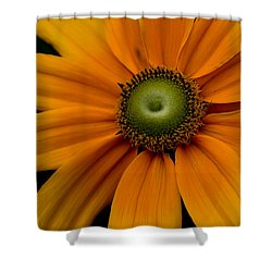 Pinwheels Shower Curtain