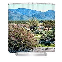 Pinyon Mtns Desert View Shower Curtain