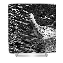 Piper Profile, Black And White Shower Curtain
