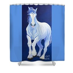 Pirouette Shower Curtain