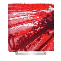 Pistil Shadow Shower Curtain