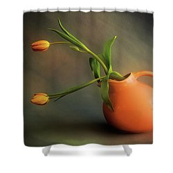 Pitcher Of Blooms Shower Curtain