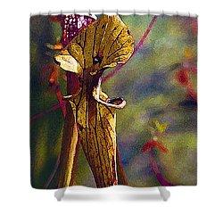 Pitcher Plant Shower Curtain by Janis Nussbaum Senungetuk