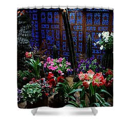 Place Of Magic 2 Shower Curtain