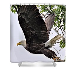 Places To Go - Things To Do Shower Curtain