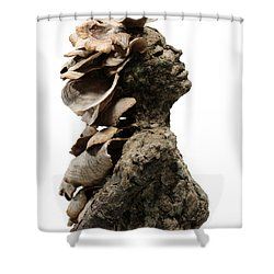Placid Efflorescence A Sculpture By Adam Long Shower Curtain by Adam Long
