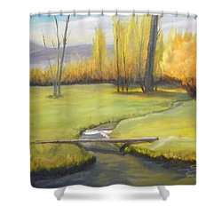Placid Stream In Field Shower Curtain by Sherril Porter