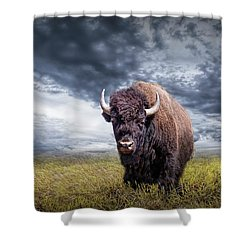 Plains Buffalo On The Prairie Shower Curtain