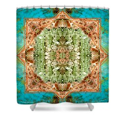 Planet Bounty Shower Curtain by Bell And Todd