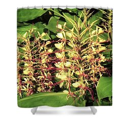 Plant Flowers Shower Curtain