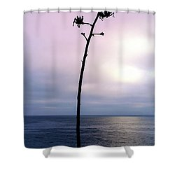 Shower Curtain featuring the photograph Plant Silhouette Over Ocean by Mariola Bitner