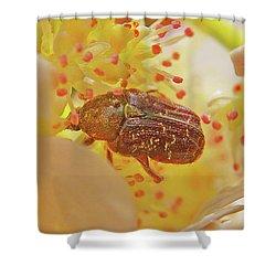 Plant Universe Shower Curtain