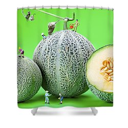 Shower Curtain featuring the photograph Planting Cantaloupe Melons Little People On Food by Paul Ge