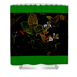 Plants In Abstract 19 Shower Curtain