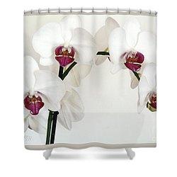Platnum Beauty Orchids Shower Curtain by Marsha Heiken