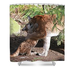 Shower Curtain featuring the photograph Playful Hugs by Laddie Halupa