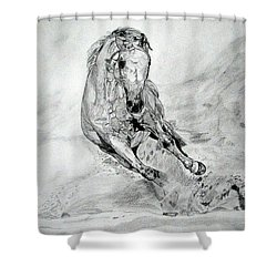 Playfull Shower Curtain by Melita Safran