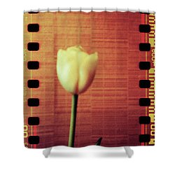 Playground #154f Shower Curtain