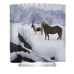 Playing In The Snow Shower Curtain