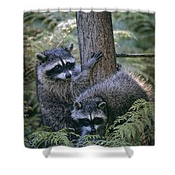 Playing In The Woods Shower Curtain
