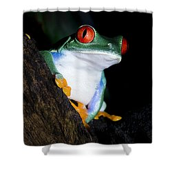 Playing It Cool Shower Curtain