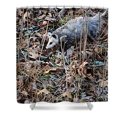 Shower Curtain featuring the photograph Playing Possum by Mark McReynolds