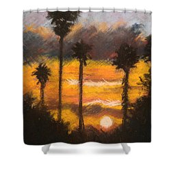Playing With Fire, San Diego Shower Curtain