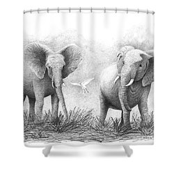 Shower Curtain featuring the drawing Playtime by Phyllis Howard