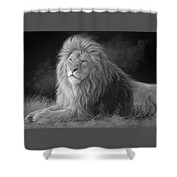 Pleasant Breeze - Black And White Shower Curtain