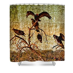 Pleasanton Vultures Shower Curtain
