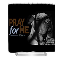 Shower Curtain featuring the digital art Please Pray For Me by Kathy Tarochione