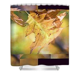 Pleasures Of Autumn -  Shower Curtain