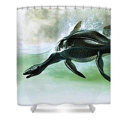 Plesiosaurus Shower Curtain by William Francis Phillipps