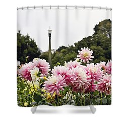 Shower Curtain featuring the photograph Plethora Of Dahlias by Cindy Garber Iverson