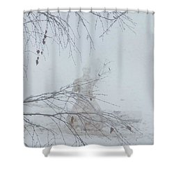 Shower Curtain featuring the photograph Plongee Dans La Neige by Marc Philippe Joly