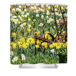 Plow In Field Of Daffodils Shower Curtain