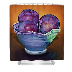 Plum Assignment Shower Curtain