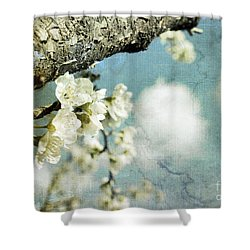 Plum Blossoms And Puffy Clouds Shower Curtain