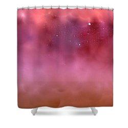 Plum Fairies Shower Curtain