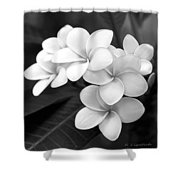 Shower Curtain featuring the photograph Plumeria - Black And White by Kerri Ligatich