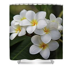 Plumeria - Golden Hearts Shower Curtain
