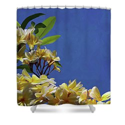 Plumeria_01 Shower Curtain