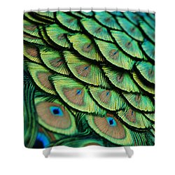 Shower Curtain featuring the photograph Plumes by Lorenzo Cassina