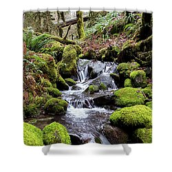 Pnw Forest Shower Curtain