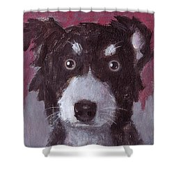 Po The Dog Shower Curtain