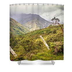 Podocarpus National Park Shower Curtain